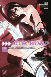 Accel World Light Novel