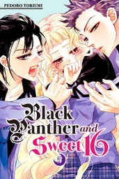 Black Panther and Sweet 16 Volume 5