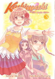 Kashimashi Girl Meets Girl Vol. 3