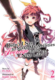Didn't I Say To Make My Abilities Average In The Next Life?! Light Novel